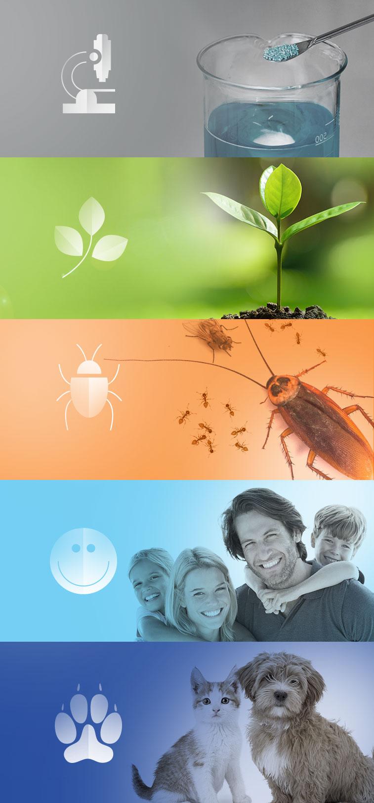 ICB Pharma departments - graphics