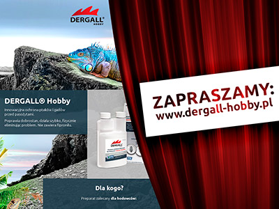 New website dermal-hobby - graphics