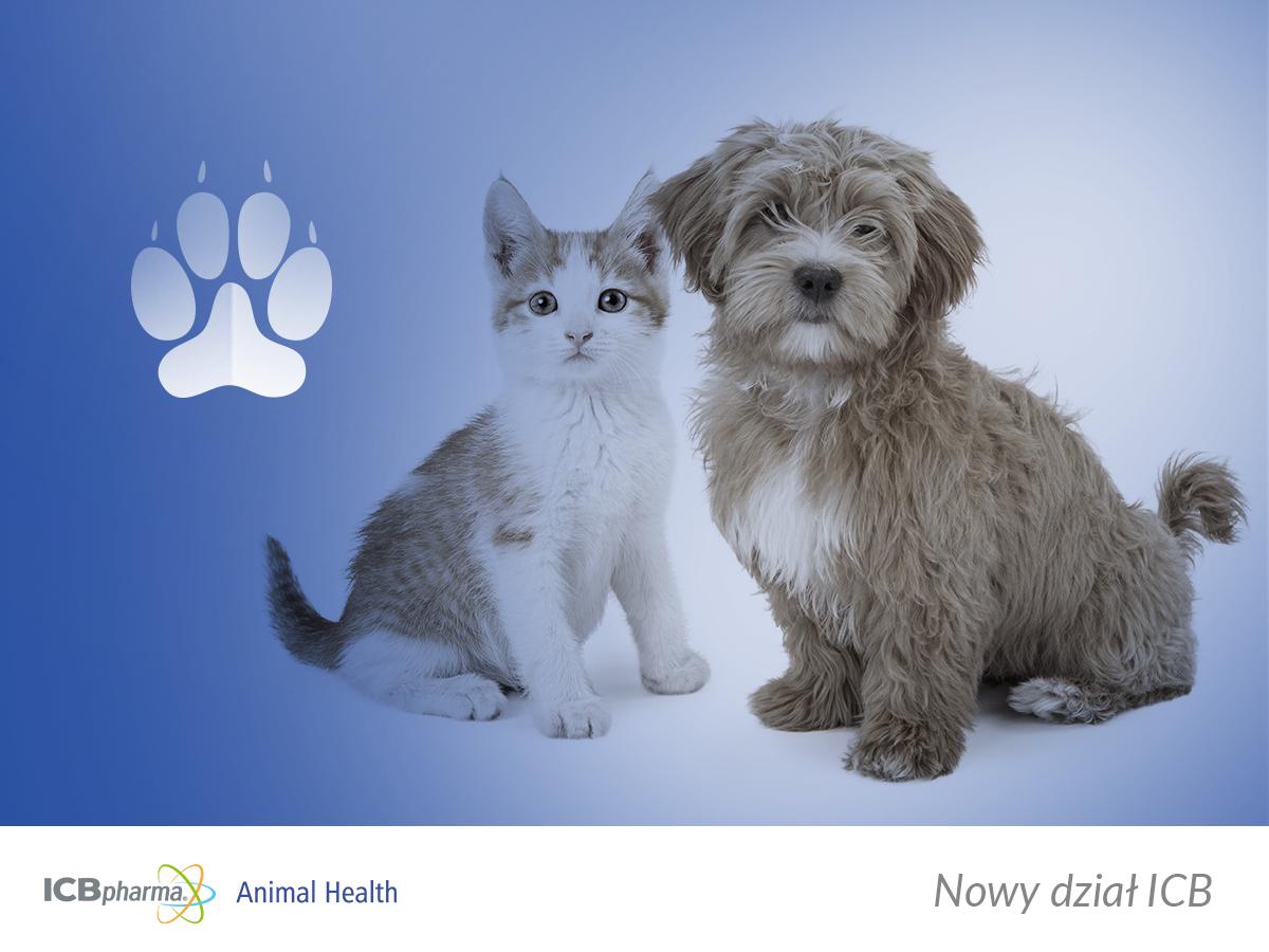 ICB Pharma Animal Health - graphics