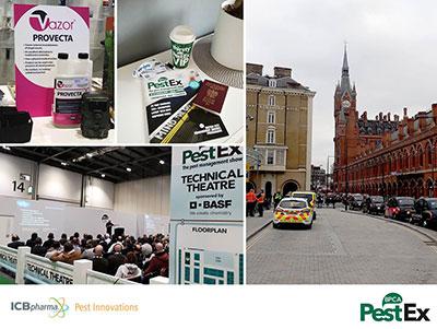ICB Pharma Pestex - photo