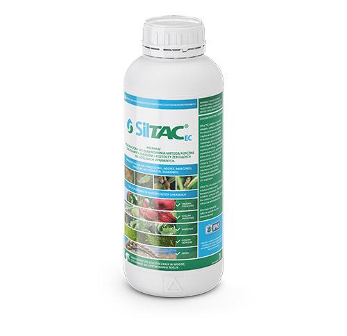 Siltac - zdjęcie produktu