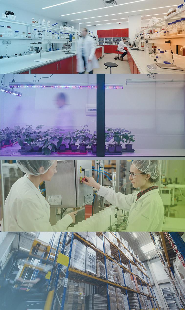 Grafika przedstawiająca laboratorium ICB PHARMA