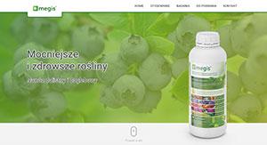 Megis - screen strony internetowej