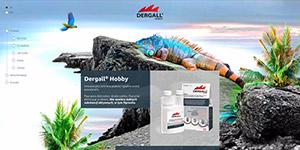 Dergall Hobby - zdjęcie strony internetowej