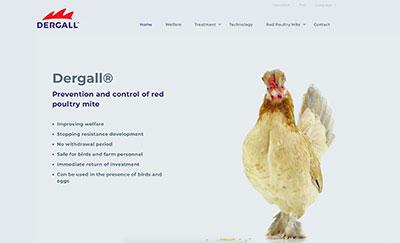 Grafika nowej strony internetowej Dergall.com