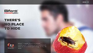 Bifent website screenshot