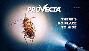 Provecta website screenshot