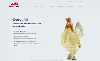 New website dergall.com - Image